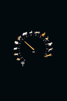 Animal Petrol Meter