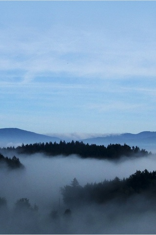 Mist Earth