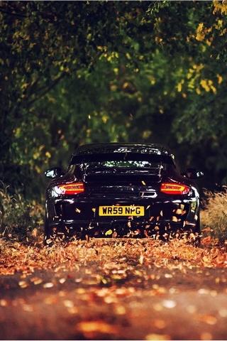 Droga na jesieni