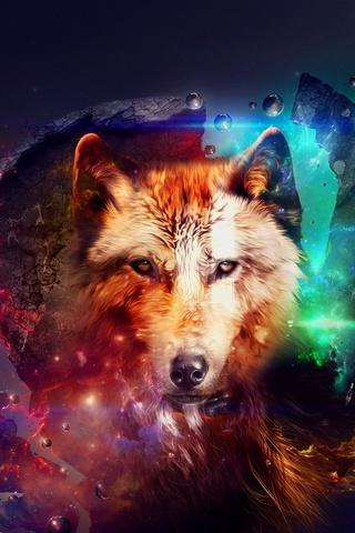 늑대 예술