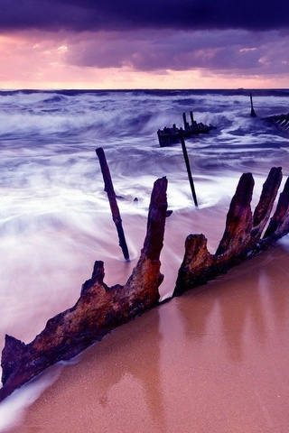 Rusty Remains
