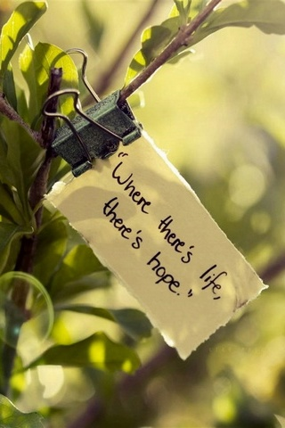Hy vọng cuộc sống
