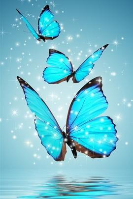 Сині метелики