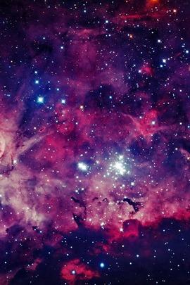 Purple Universe