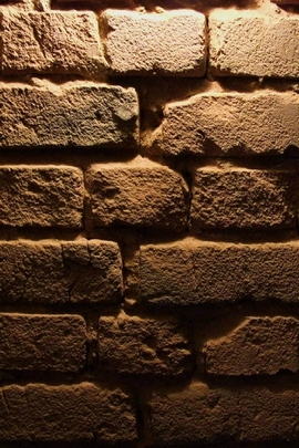 Old Brick Wall Texture I