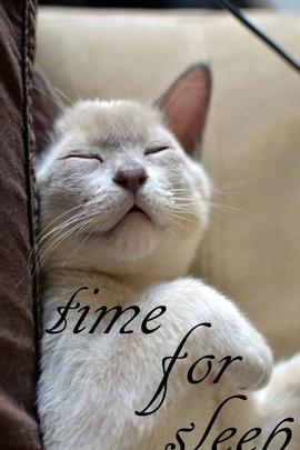 Время спать