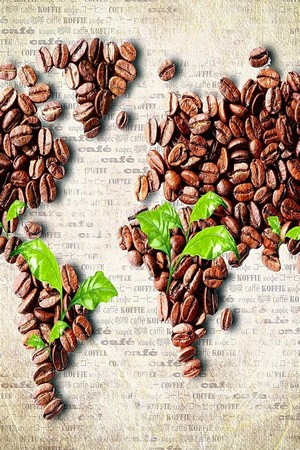 Coffee Seeds Map