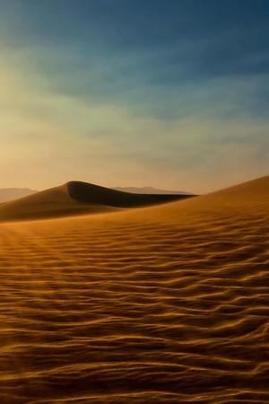 Evening Empty Desert