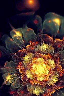 3D Blume