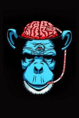Psychedelic Monkey