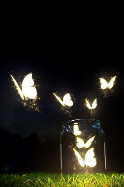 Glowing Butterflies Shine
