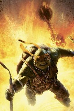 Ninja Turtles 9 11 Poster