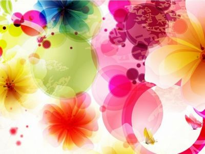 Vector Design Flowers And Butterflies