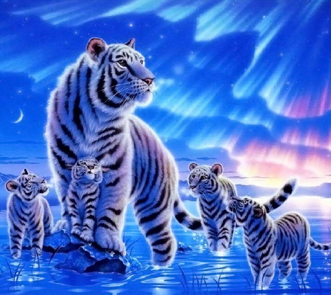 Harimau Putih Wallpaper Muat Turun Ke Telefon Bimbit Anda Dari Phoneky