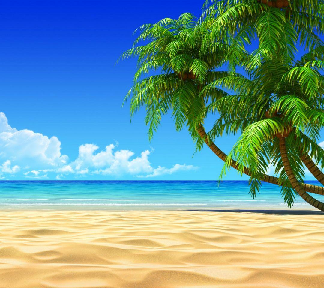 Spiaggia E Palme Sfondo Scarica Sul Tuo Cellulare Da Phoneky