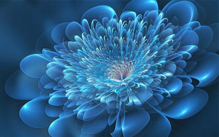 Belle Fleur Bleue Large Hd Nouvelles Meilleures Images De Fond D Ecran Gratuit Fond D Ecran Telecharger Sur Votre Mobile Depuis Phoneky