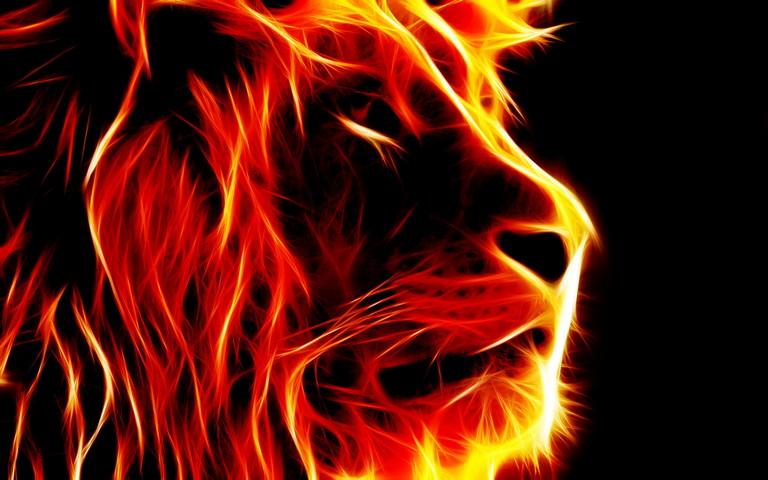 Sư tử sư tử