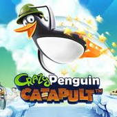 Crazy Penguin