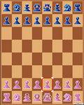 Шахматный чемпион