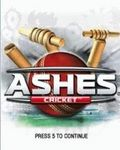 Ashes Cricket 2010 (176x220)