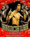BRUCE LEE IRON FIST