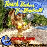 beach babes volleyball