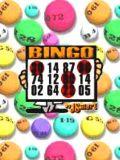 Bingo (Multiscreen)