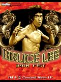 Bruce Lee Iron Fist
