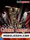 Лига чемпионов по крикету