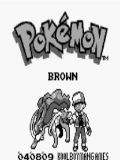 Pokemon Brown - Final