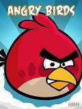 Angry Birds 240x320