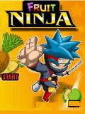 Fruit Ninja 240x320