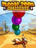 Bubble Boom Challenge