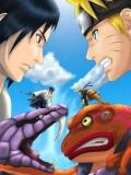 Naruto Blood Fighting