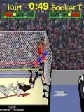 WWE Cage