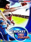 Cricket T20 Fever