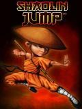 Шаолиньский прыжок