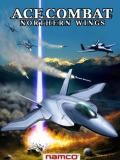 Ace Combat - Northern Wings