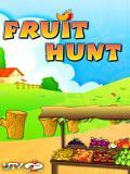 Fruit Hunt 240 X 320