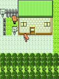Pokemon Oscure 2