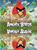 Angry Bird Crazy Version (China)