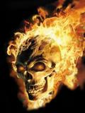 ghost rider:spirit of evange