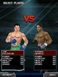 Ultimate BOXING 3DES