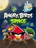 Kızgın Kuşlar Uzay (240x320)
