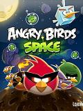 Angry Birds Space v1.0