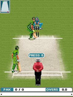 Java cricket games download 128x160 | Cricket java game size