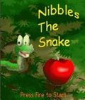 Nibbles The Snake