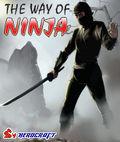 Kam2 Ninja Fly 176x220 Стилус