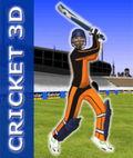 क्रिकेट 3 डी