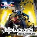 Red Bull Motocross (240x320)